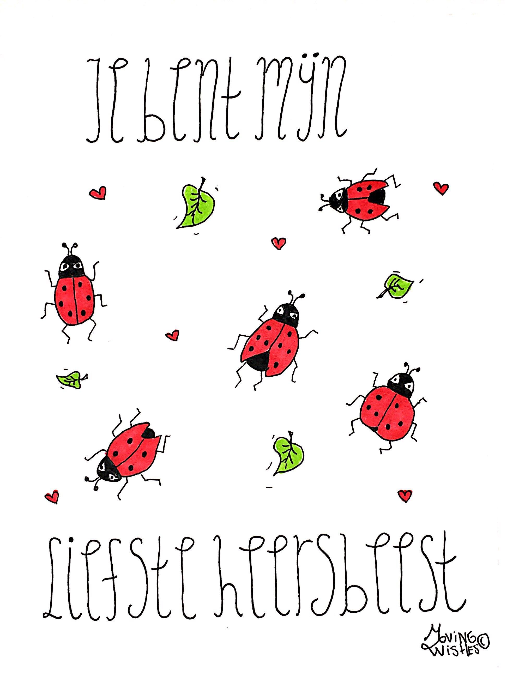 Wenskaart lieveheersbeestjes.
