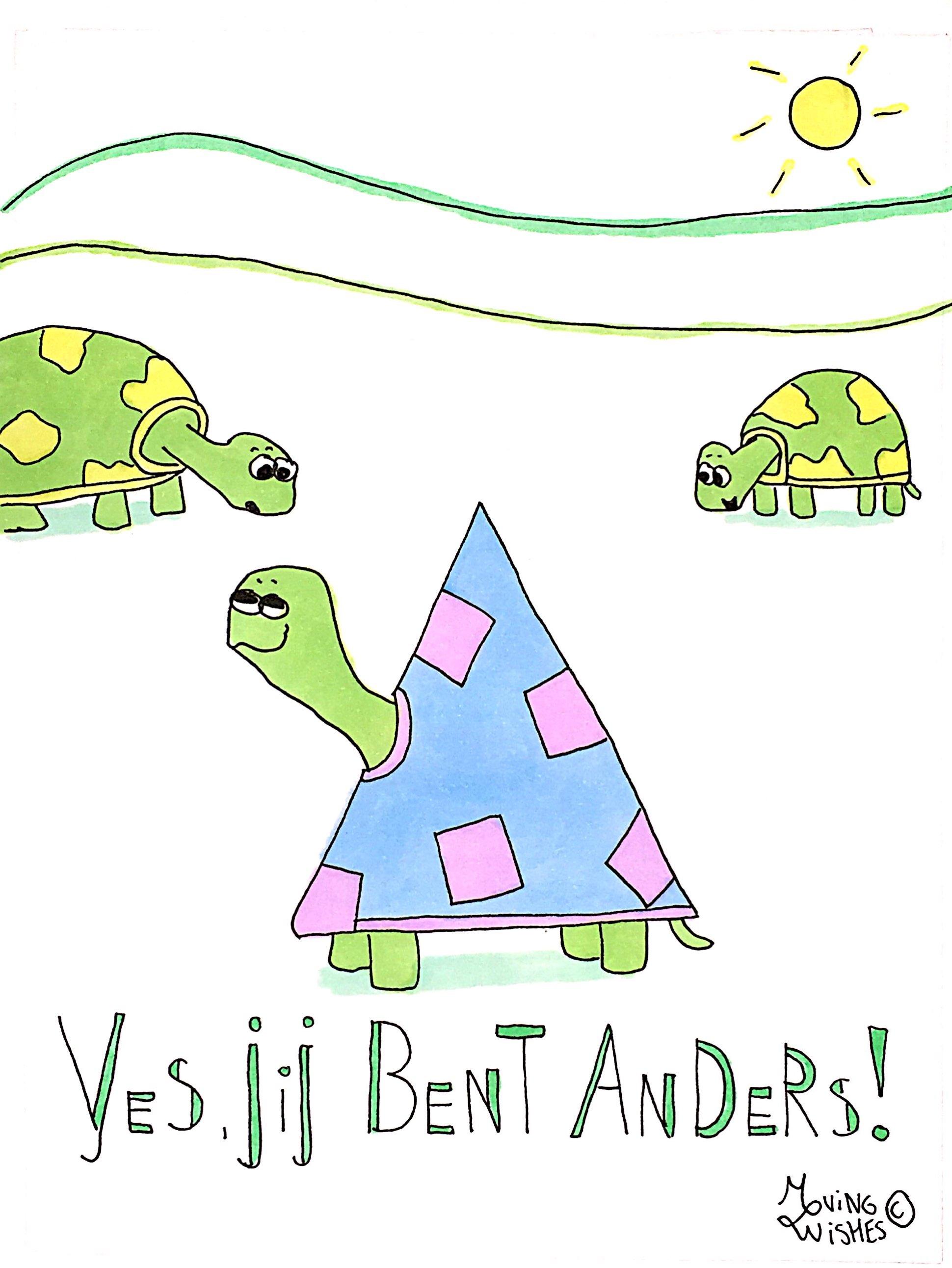 Wenskaart bijzondere schildpad.